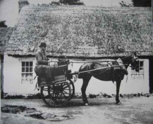 Typical 19th Century Irish Jaunting Car